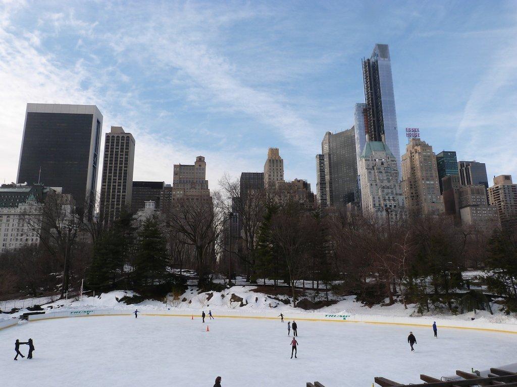 new-york-hiver-neige-central-park