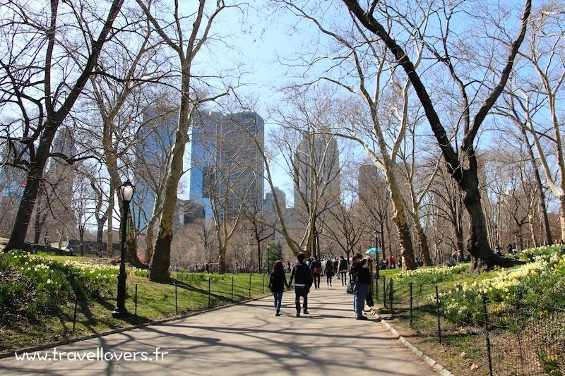 promenade-a-central-park