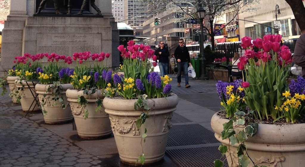 fleurs-new-york