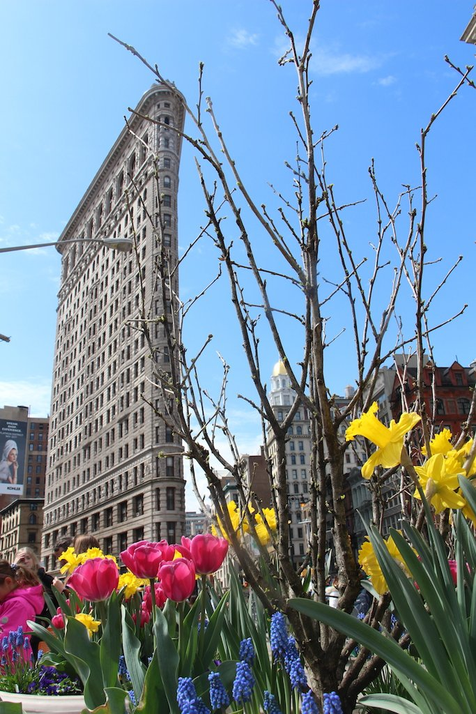 fleurs-flatiron-building-new-york-city